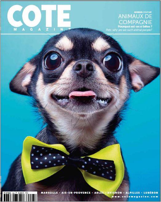 Article pour chien luxe toutou dans le Magazine Cote
