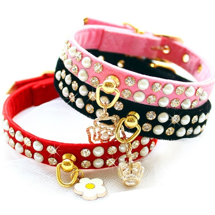 collier perle pour chien