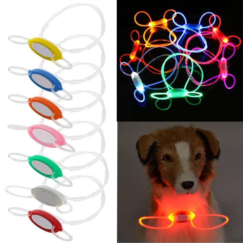 collier lumineux pour chien fibre optique
