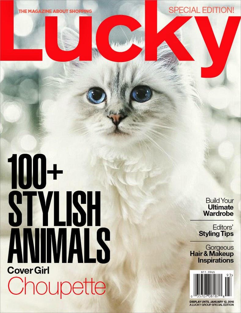 Luxe toutou article de presse magazine Lucky